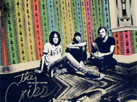 Album Review: The Cribs – For All My Sisters