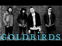 Richer Unsigned: Artist of the Week – Goldbirds