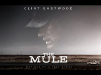Film review: The Mule